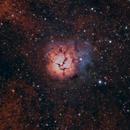 Trifid Nebula (M20),                                Andy  Brown
