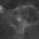 The Heart Nebula,                                Julien Lana
