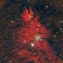 NGC2264 ,                                Giorgio Baj