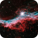 NGC 6960 - Western Veil Nebula - Closeup,                                Greg Polanski