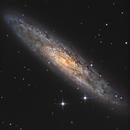NGC253 Glx du sculpteur,                                siegfried_m31