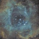 Rosette Nebula,                                Karl
