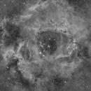 NGC2239 Rosette Nebula HA,                                Vincent