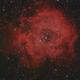 NGC 2244,                                Michael Schröder