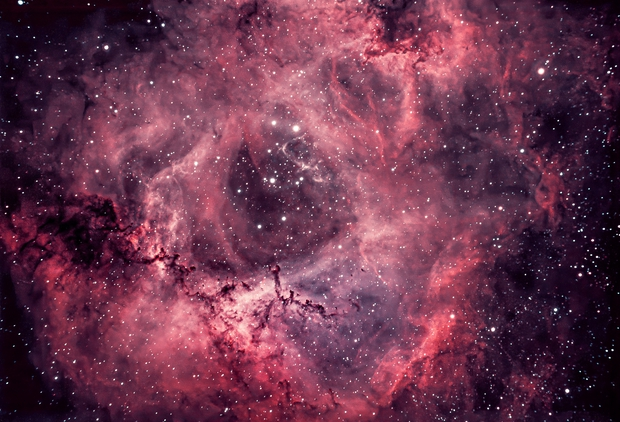My Valentines version of the Rosette Nebula,                                Mike