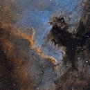 NGC 7000 The Cygnus Wall,                                Adam Ament