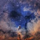 IC1396,                                Dasidius