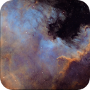 NGC7000,                                Vincent