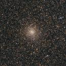 Messier 28 in Sagittarius,                                Michael Feigenbaum