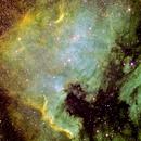 NGC 7000 - North American Nebula in Narrowband ,                                Manuel