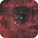The Rosette, NGC 2244,                                Madratter