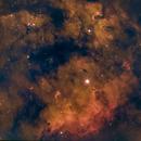 NGC 7822,                                Phil Montgomery