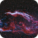 NGC 6960 - Sturmvogel,                                Peter Schmitz