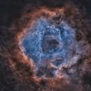 Rosette nebula SHO Starless,                                SkyEyE Observatory