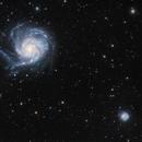 M101 and NEIGHBORS,                                Doug.,N. Jiang