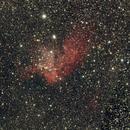 Wizard Nebula,                                Ray Heinle