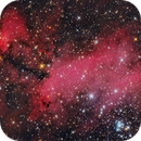 IC 4628 - THE PRAWN NEBULA - NEBULOSA DO CAMARÃO,                                Irineu Felippe de Abreu Filho