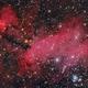 IC 4628 - THE PRAWN NEBULA - NEBULOSA DO CAMARÃO,                                Irineu Felippe de...