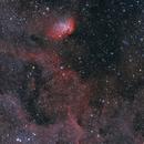 Tulip Nebula (HaOIIIRGB),                                John Renaud