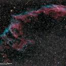 NGC. 6992 - The Viel Nebula,                                Patrick Cosgrove