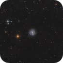 NGC 3184,                                Bernhard Zimmermann