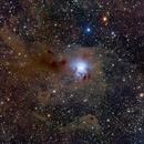 NGC 7023 Iris Nebula,                                Yu-Peng Chan