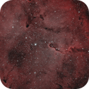 IC1396,                                Andreas Zeinert
