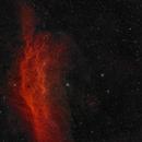 NGC 1499 The California Nebula,                                Matt Dugas
