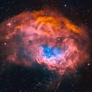 Big Brain Nebula - Sh2-261 - Hubble Palette,                                Chuck's Astrophot...
