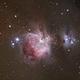M42 - Orion,                                Alexandre Piquelin