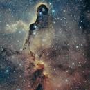 IC 1396 Elephant's Trunk,                                dkuchta5