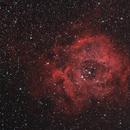 Rosetta - NGC 2237,                                Valerio Pardi