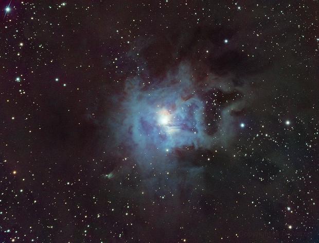 NGC 7023 The Iris Nebula,                                Mark Wetzel