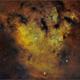 NGC 7822,                                Randal Healey
