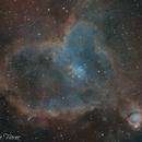 Heart Nebula in SHO,                                Kameron Hover