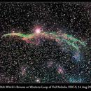 NGC 6960, Witch's Broom or Western Loop of Veil Nebula, UHC-S, 16 Aug 2013,                                David Dearden