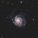 M101 - Pinwheel Galaxy HaLRGB,                                Phil Brewer