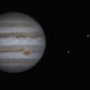 First Jupiter 2016,                                Seal