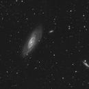Messier 106 luminance ,                                grizli21