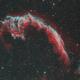 NGC 6992 (Eastern Veil),                                ceteris_paribus
