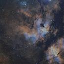 IC1318 region - SHO,                                Craig