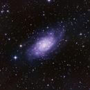 NGC2403,                                Seymore Stars
