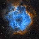 Rosette Nebula (Caldwell 49) - SHO,                                dswtan