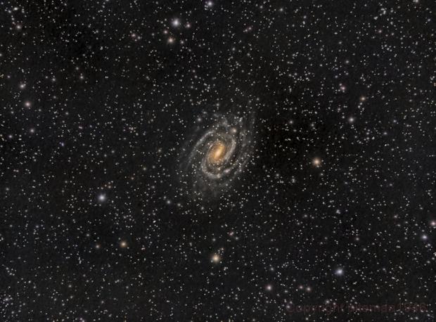 NGC6384 Spiral Galaxy,                                niteman1946