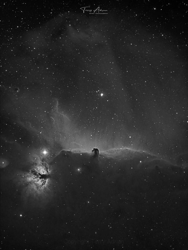 IC434 Horse Head Nebula,                                Terry Adrian