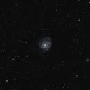 Pinwheel Galaxy with Ed80,                                Nicholas Bradley