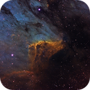 Pelican Nebula,                                AstroPoverty