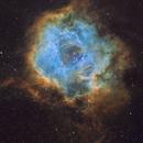 NGC 2244 •Rosette Nebula in SHO,                                Douglas J Struble