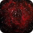 Rosette Nebula-NGC 2244,                                Norm Fox