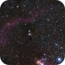 Barnard's Loop - M78,                                Jan Curtis